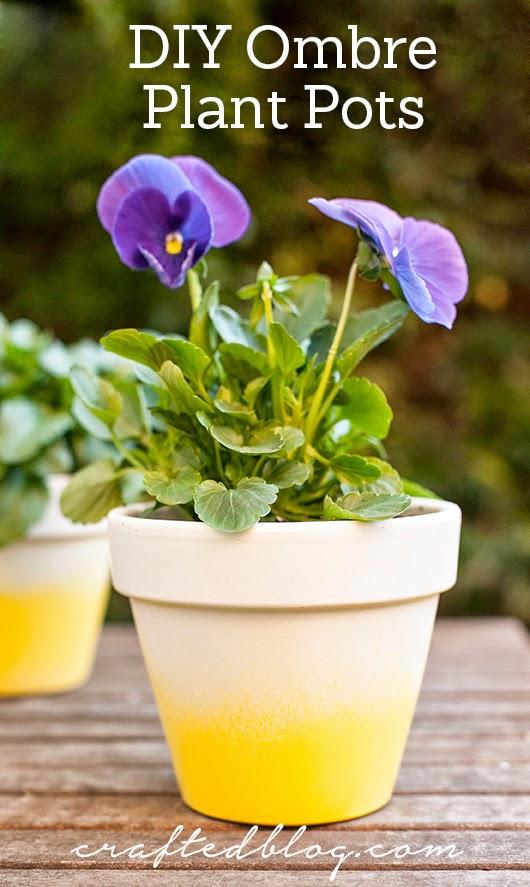 DIY Ombre Plant Pots