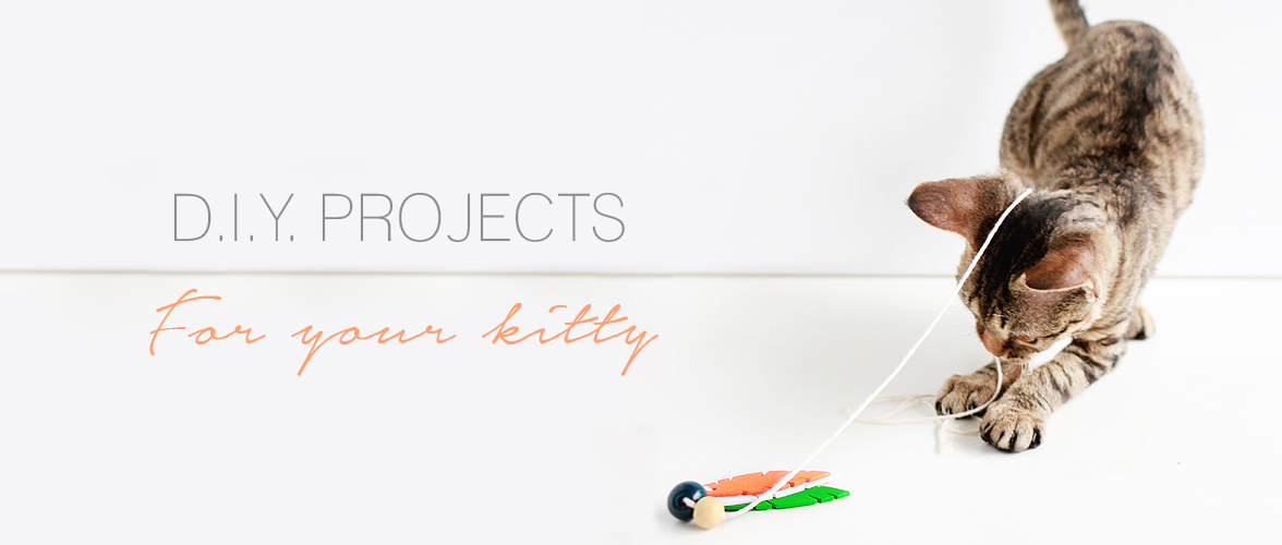 Kitty Kraft – DIY projects for your cat